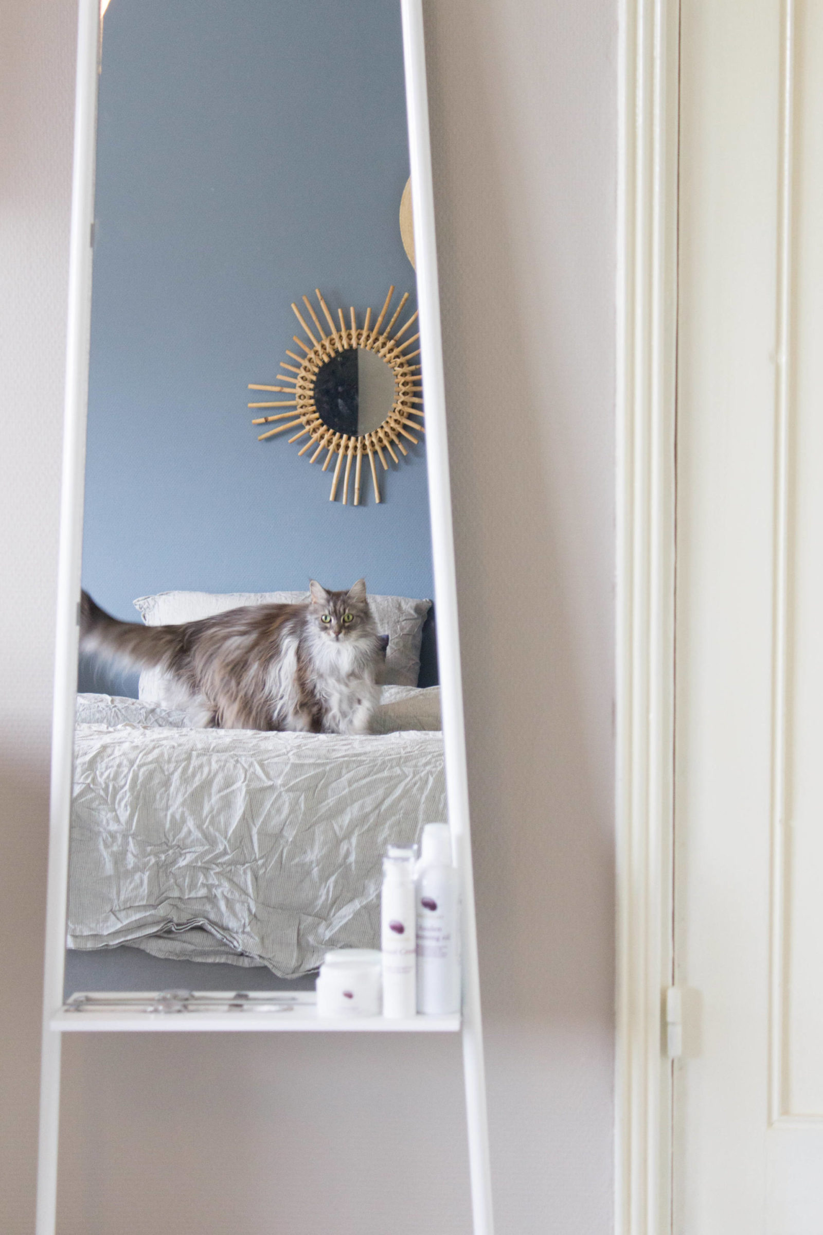 spiegel Zuiver
