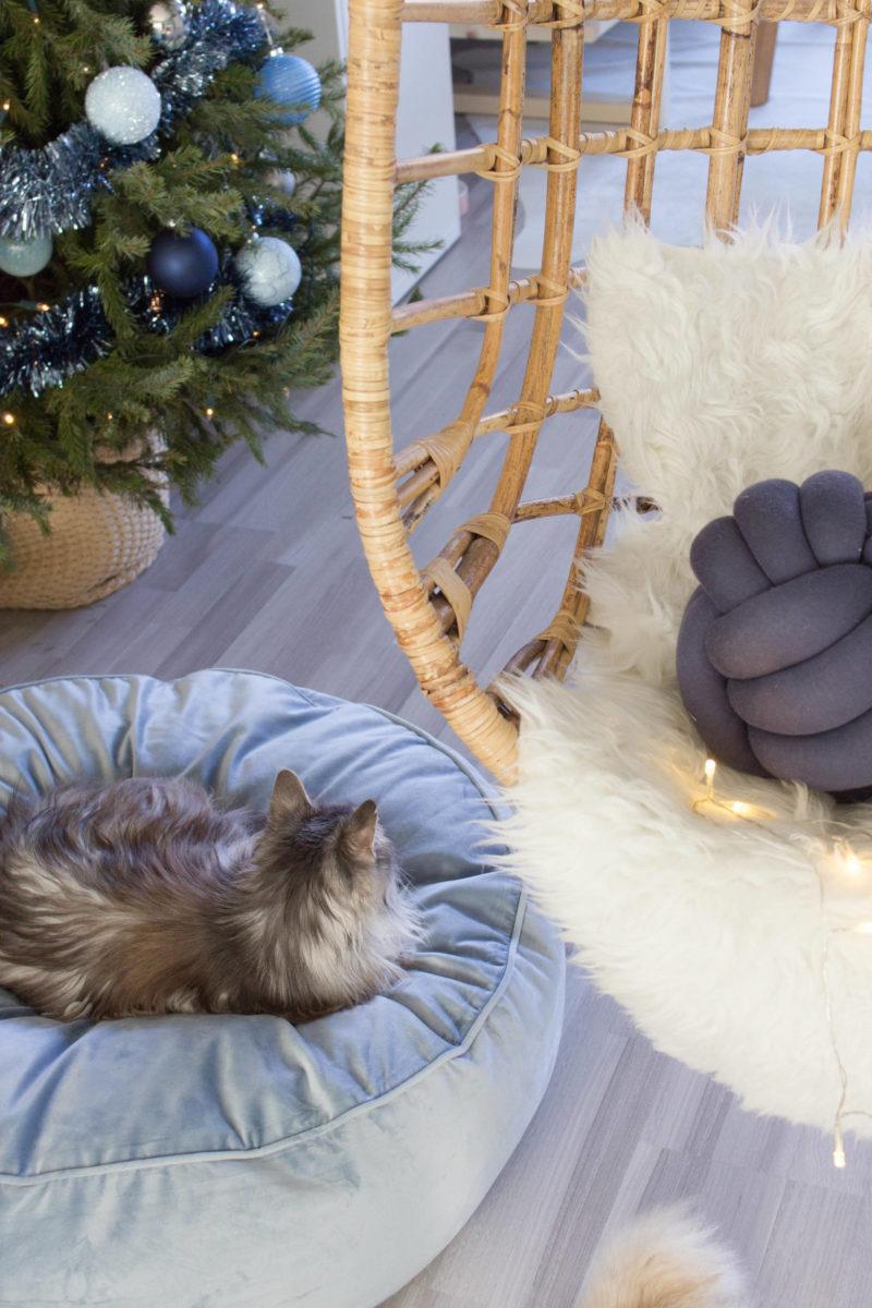 kerstcadeau huisdier