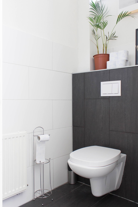 toilet make over